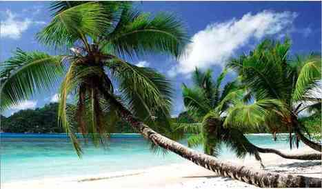 Travel Guide Seychelles, Africa | WomenPulse | Scoop.it