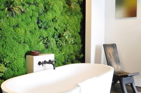 LOOK: Is This The Future Of Indoor Gardening? | climate change | Scoop.it