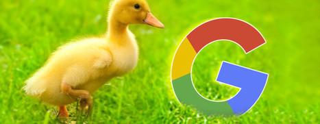 Why This Longtime Google Fan Now Prefers DuckDuckGo | Education & Numérique | Scoop.it