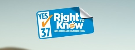Vote YES on Prop 37 and Join Us In the Fight For GMO Labeling « Stonyfield Farm: organic yogurt, organic living, & healthy food – BLOG | Urban Farmer | Scoop.it