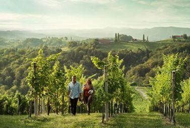 Vignobles du monde : L'Autriche - Magazine du vin - Mon Vigneron | Actualités du Vin | Scoop.it