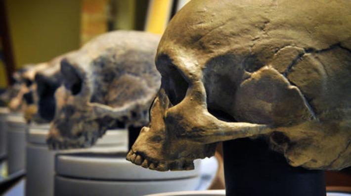 Premiers hommes : nos origines , même très lointaines, sont beaucoup plus humaines qu'on ne l'imaginait | France Inter | Kiosque du monde : A la une | Scoop.it