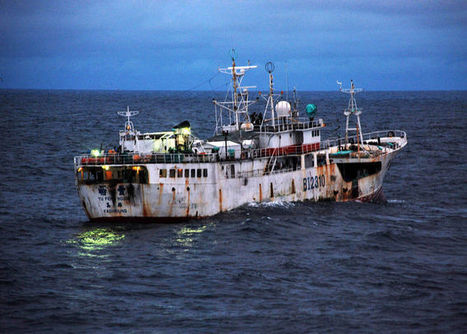 Pirate fishing steals from poor and wrecks marine environment | Commercial fishing - legal issues | Scoop.it