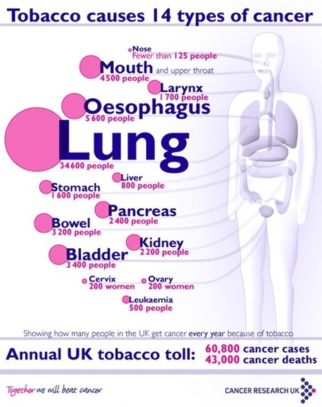 Cancers Caused By Smoking Infographic   Impact of Cigarette Smoking   Scoop.it