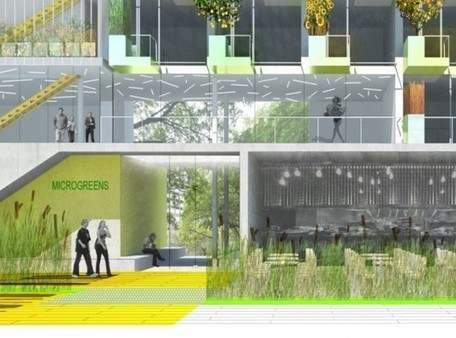 MicroGreens: Bernheimer Architecture's Tiny Apartment Concept Boasts a Vertical Greenhouse | Inhabitat New York City | housing | Scoop.it