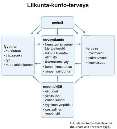UKK-instituutti - Liikunnan vaikutukset | TE2 Linkkigalleria | Scoop.it