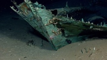 Watch Archaeologists Explore a Gulf of Mexico Shipwreck   National Geographic   Amériques   Scoop.it