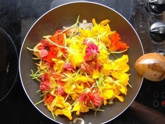 42 Flowers You Can Eat- would you? | Eco Reality | Scoop.it