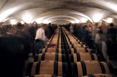 Hospices de Beaune: récolte en baisse, millésime 2013 «rare et ... - Libération | Le vin quotidien | Scoop.it