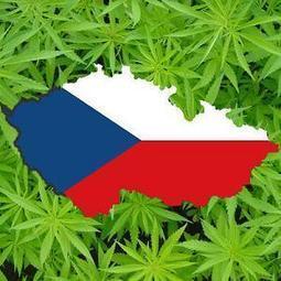 Czech Parliament Approves Medical Marijuana Bill | Cannabis & CoffeeShopNews | Scoop.it