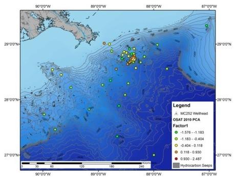 The Deep-sea footprint of Deepwater Horizon | Deep Sea News | Amocean OceanScoops | Scoop.it