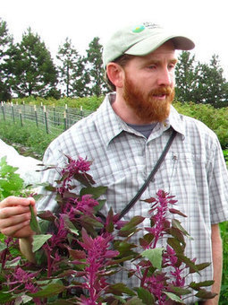 Quinoa Craze Inspires North America To Start Growing Its Own : NPR | Local Food Systems | Scoop.it