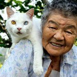 Chronicle of 87-Year-Old Grandmother and Her Beloved Cat   Le monde by Directours   Scoop.it