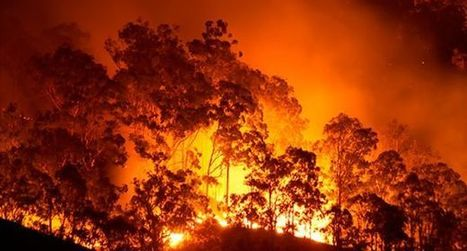 Arizona Facing High Fire Danger a Year After Yarnell | UANews | CALS in the News | Scoop.it