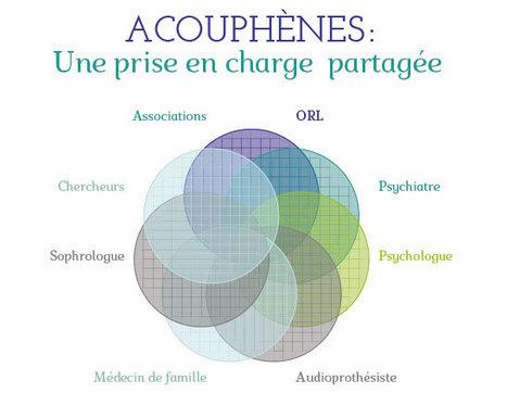 5ème colloque de l'AFREPA : «Acouphènes : une prise en charge partagée» au programme.   Evelyne Renardier   Scoop.it