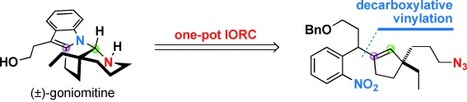 Palladium-Catalyzed Decarboxylative Vinylation of Potassium Nitrophenyl Acetate: Application to the Total Synthesis of (±)-Goniomitine | Wiki_Universe | Scoop.it