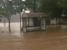Grafton narrowly escapes flood devastation - Yahoo!7 News | Save Grafton | Scoop.it