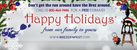 Local Pest Control Tips & How To Handle Holiday Pests | Business And Marketing | Scoop.it