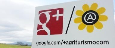 Google+ per le aziende? Un caso concreto [guest post] | Social Web | Social media culture | Scoop.it