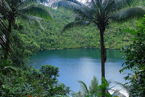 {eazy traveler}: Dinagat Islands: The Enigma of Bababu Lake   Philippine Travel   Scoop.it