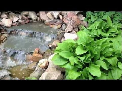 Tuin Video's   Groene vingers   Scoop.it
