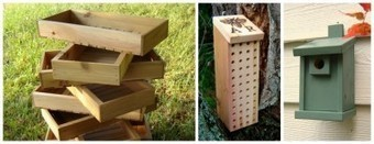 Day 20 – Mason Bee House From Reclaimed Wood | Reclaimed Wood Furniture | Scoop.it