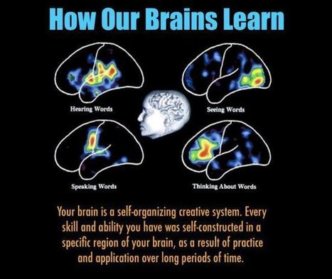 Understanding How Our Brains Learn | E-Learning... | Burak Yavuz | Scoop.it