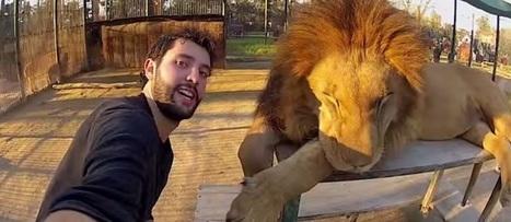 How can travel brands take advantage of the selfie phenomenon? | Web 2.0 et société | Scoop.it