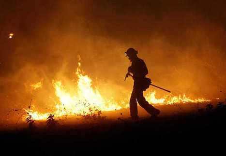 Calif. firefighters brace for hot year, more than 400 January wildfires - Merced Sun-Star | Forestry-Aspect 1 | Scoop.it