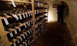 150-year-old wine found in Czech castle to be auctioned | DiverSync | Scoop.it
