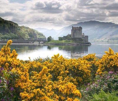 4600-yr-old pub found in Scotland | Scots News | Scoop.it
