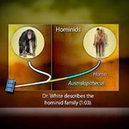 Skeletons Reveal Human and Chimpanzee Evolution | HHMI's BioInteractive | ScienceStuff | Scoop.it