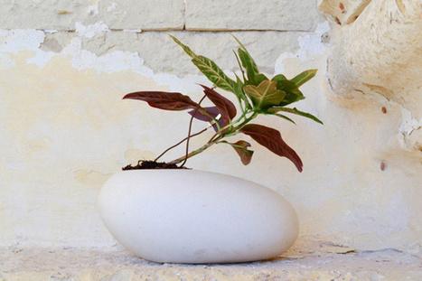 Ecogaia.com | Electricidad y música ambiente generada por plantas | Agua | Scoop.it