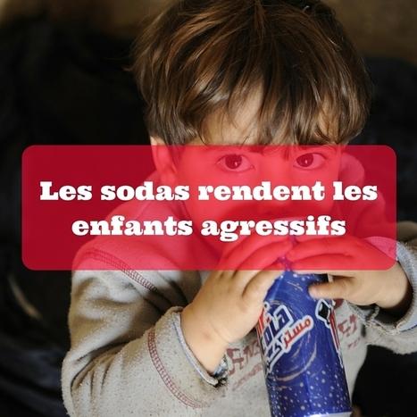 Les sodas rendent les enfants agressifs | POURQUOI PAS... EN FRANÇAIS ? | Scoop.it