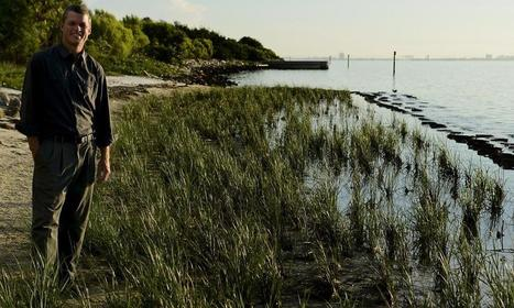 To conserve and protect MacDill's natural resources - DVIDS | Fish Habitat | Scoop.it