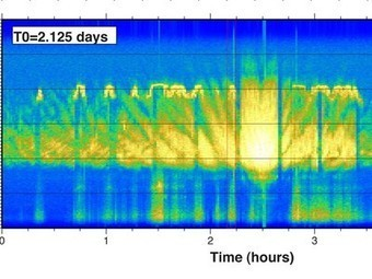 Whale songs discovered in seismic recordings | Education and hope | Scoop.it