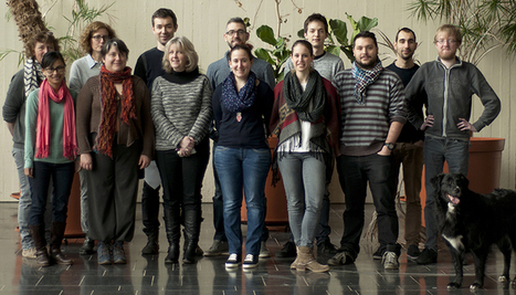 Les processus bioénergétiques des microalgues | Institutionnel | Scoop.it
