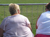 BBC - Health: Obesity | AQAGeog1 Health Issues | Scoop.it