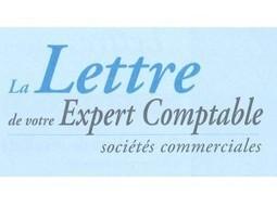 La Lettre de votre expert-comptable - Cabinet MENON | Actualité juridique, conseil, fiscal, social, expertise comptable | Scoop.it