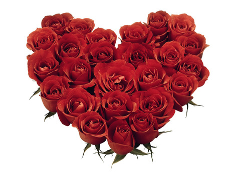 Happy Rose Day 2014 Wishes Messages | Valentine Day 2014 Quotes, Happy Valentine Day Messages, SMS, Wallpapers | valentines day quotes and messages | Scoop.it