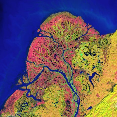 Earth as Art: 5 Most Popular Landsat Satellite Images | History of Science Arts | Scoop.it