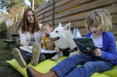 Apeldoornse hond helpt bij taal en rekenen - De Stentor | literatuuractua laurinawade | Scoop.it