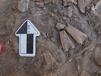 Alaska researchers find 12,300-year-old bone pendants   Archaeology News Network   Kiosque du monde : Amériques   Scoop.it