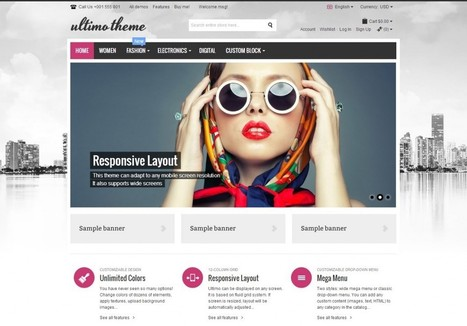 BEST eCommerce WordPress Themes of All Times | + Bonus Theme | eCommerce Website Templates | Scoop.it