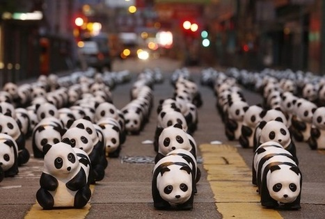 SEOUL: 1600 Pandas World Tour Arrives - WGSN/INSIDER WGSN/INSIDER | HELPING ANIMALS IN DANGER by Oumnia | Scoop.it