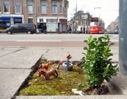 Beautifying Urban Landscapes: Guerrilla Gardening and Pothole Gardening - Garden Toolbox Blog - Garden Tips & Advice | Wellington Aquaponics | Scoop.it