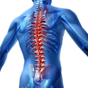 Spinal Injuries and Paralysis News and Information