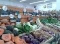 Peut-on nourrir tout le monde avec le bio ? | Toute l'actualité de l'agriculture biologique du Finistère | Scoop.it