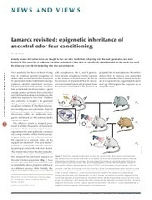 Lamarck revisited: epigenetic inheritance of ancestral odor fear conditioning | Social Foraging | Scoop.it