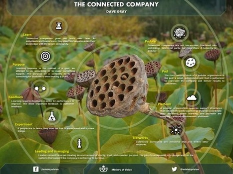 Vision of The Connected Company (Infographic) | Ministry of Vision | Scoop.it